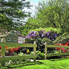 Spring Garden With Wisteria by Susan Savad