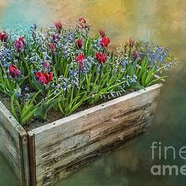 Spring In A Crate by Eva Lechner
