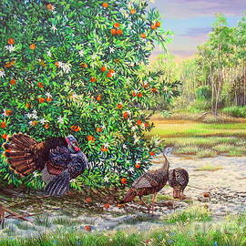 Spring Morning- Florida Oranges and Osceola Turkeys by Daniel Butler