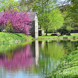 Spring Nirvana along the Morris Canal NJ by Regina Geoghan