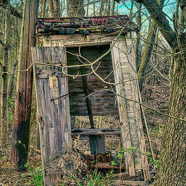 Spring Outhouse In The Woods by Janice Pariza