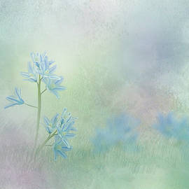 Spring Scilla - White Squill by Patti Deters