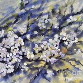 Spring Signs by Amalia Suruceanu