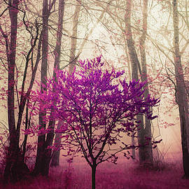 Spring Trees in the Mysterious Forest by Debra and Dave Vanderlaan