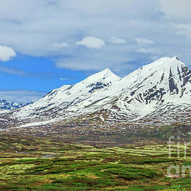Spring View Coastal Mountains On Klondike Highway by Robert Bales