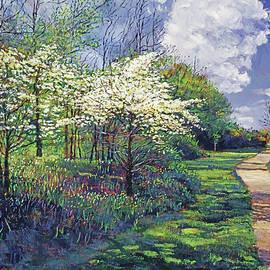 Spring Walk In The Park by David Lloyd Glover
