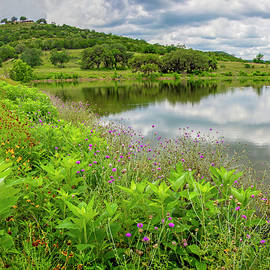Spring Wildflowers and Reflections at Joshua Creek by Lynn Bauer