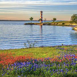Spring Wildflowers of Lake Buchanan by Lynn Bauer
