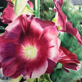 Spring's Blossom  by Yesenia Villa