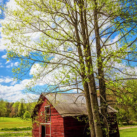 Springtime at the Barn  by Debra and Dave Vanderlaan