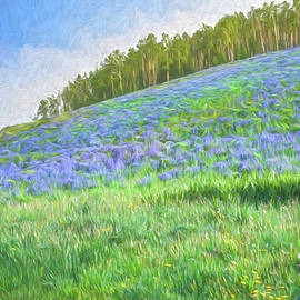 Springtime In Crested Butte by Lorraine Baum