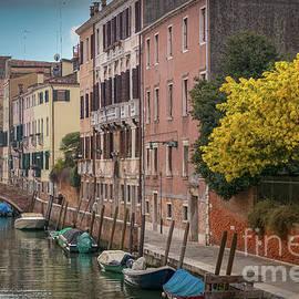 Springtime in Venice by Viv Thompson