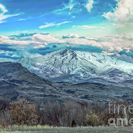 Springtime On Squaw Butte by Robert Bales