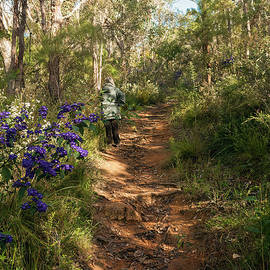 Springtime on the Mt. Melville Circuit Trail, Albany, Western Australia by Elaine Teague
