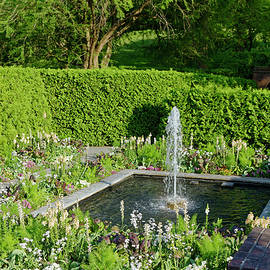 Square Fountain and Garden by Sally Weigand