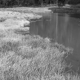 SSK 0612 So Near Yet So Dry by Sunil Kapadia