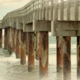 St. Augustine Beach Pier In Soft Color by Toni Abdnour