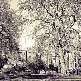 St. Georges Gardens, London, monochrome by Paul Boizot