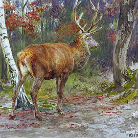 Stag on the Watch - Digital Remastered Edition