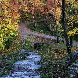 Stairs to autumn by Ren Kuljovska