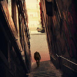 Stairway in the Alley  by Carlos Caetano