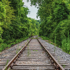 Standing Over The Railroad Tracks by Jennifer White