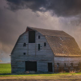 Standing Up To the Storm by Darren White