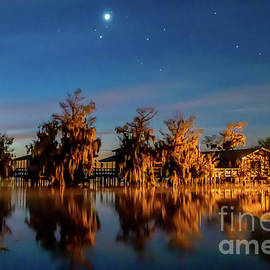 Starry Night at Blue Cypress by Tom Claud