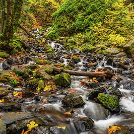 Starvation Creek by Steve Luther