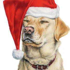 Stayin' Awake For Santa by Sarah Batalka
