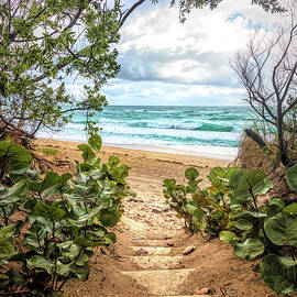 Step Down into Paradise by Debra and Dave Vanderlaan