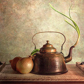 Still Life with Onion by Pat Eisenberger