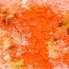 Still Orange ... by Judy Foote-Belleci