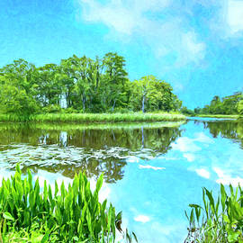 Stillness on the Bayou by Dominic Piperata