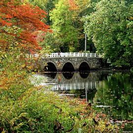 Stone Arch Bridge across Charles River by Lyuba Filatova