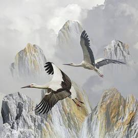 Storks of Huangshan by Spadecaller