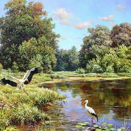 Storks on the Lake by Serhiy Kapran