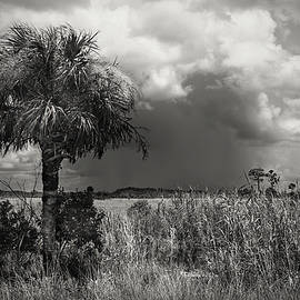 Storm over Big Cypress - 1 by Rudy Umans