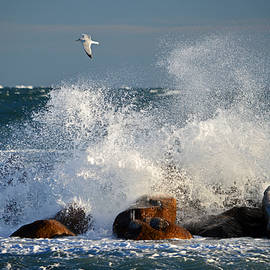 Stormy Waters - Cape Cod Bay by Dianne Cowen Photography