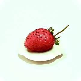 Strawberry Float by Alida M Haslett