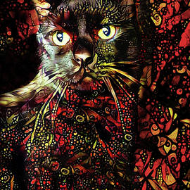 Stripes the Black Cat by Peggy Collins