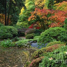 Strolling Pond and Bridge in Autumn at Portland Japanese Garden by Tom Schwabel