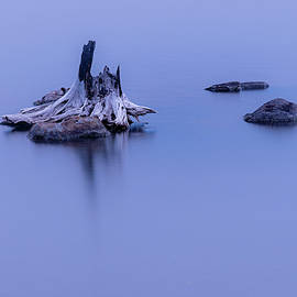 Stump and Stones by Mike Lee