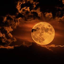 Sturgeon Moon  by Saija Lehtonen