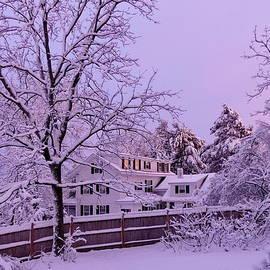 Such a Fabulous Winter Evening by Lyuba Filatova