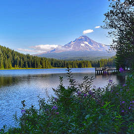 Summer at Trillium Lake by Dana Hardy