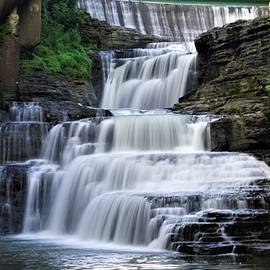 Summer at Wells Falls by Patricia Caron