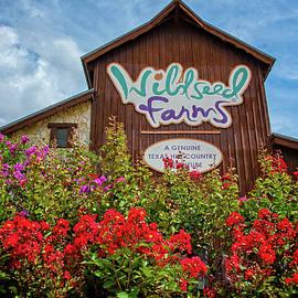 Summer at Wildseed Farms by Lynn Bauer