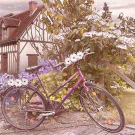 Summer Cycling in Farmhouse Flowers by Debra and Dave Vanderlaan