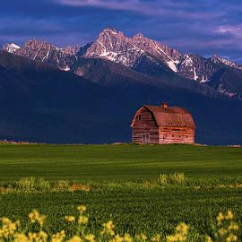 Summer Evening in Montana by Darren White